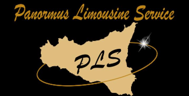 panormus-limousine